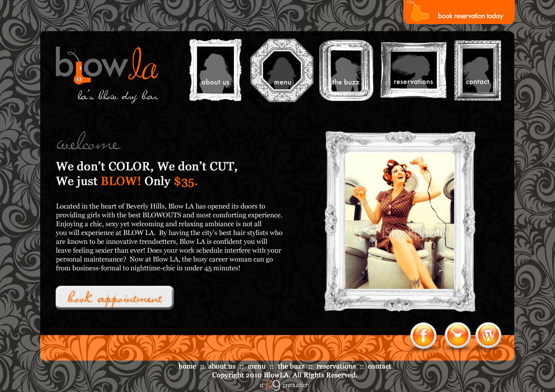 My Blow LA website